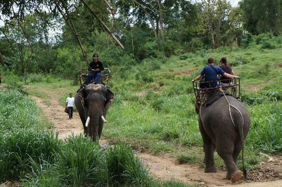 Wangpo Elephant Park