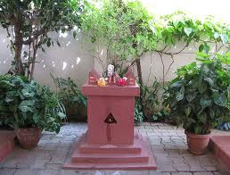 Holy Basil - Tulsi plant is worshipped in Hindu Religion