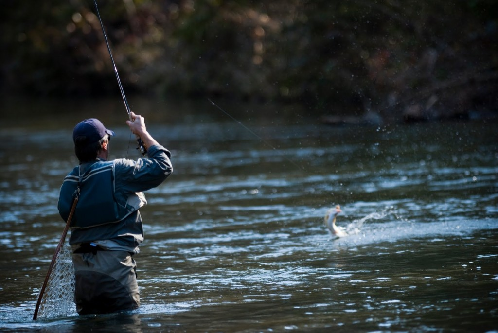 fly-fishing technique