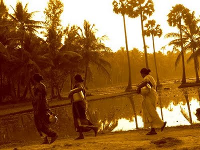 Konaseema culture is a typical rural culture of Andhra